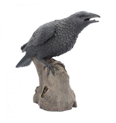 Ravens Rest 16cm